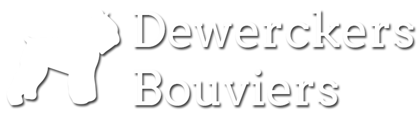 Dewerckers Bouviers